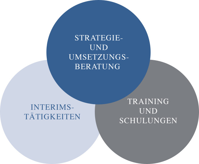 leistungen-pmbh-business-consulting